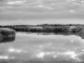 _dsc7118_zw_watermerk